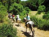 Il boom del #turismosostenibile in #Italia.   www.consulenteturisticolocale.it   Scoop.it
