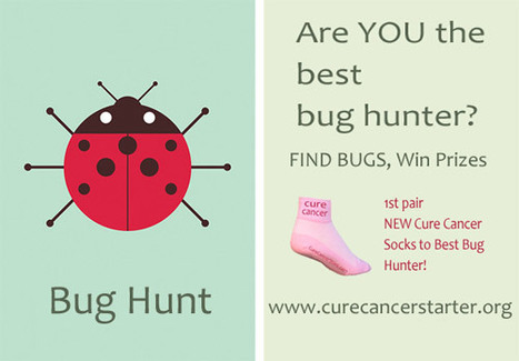 Go On A BUG HUNT on CureCancerStarter.org To Win Some Cool Cure Cancer Socks | AtDotCom Social media | Scoop.it