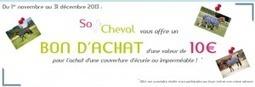 10€ en bon d'achat chez So Cheval pour tout achat d'une couverture | Le cheval c'est mon dada ! | Scoop.it