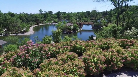 A Tour of the Japanese Garden at Frederik Meijer Gardens | Japanese Gardens | Scoop.it