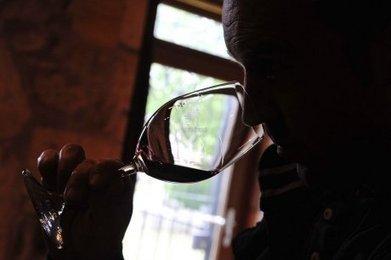Certains vins contiennent trop d'alcool, comment y remédier | Agriculture en Dordogne | Scoop.it