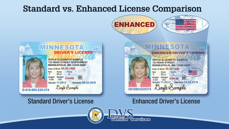 Minnesota becomes fifth state to offer enhanced driver's licenses and ID cards | Gov & Law - Maureen | Scoop.it