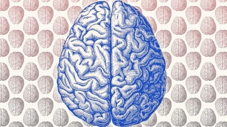 4 Tips to Wire Your Brain for Entrepreneurial Wisdom | A New Paradigm of Development | Scoop.it
