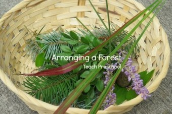 Discover and Explore: Arranging a forest   Teach Preschool   Scoop.it