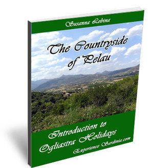 Sardinia Guide to Holidays in Ogliastra - | Sardinia Italy Sardegna | Scoop.it