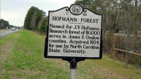 NC State refocuses on conservation of Hofmann Forest | Timberland Investment | Scoop.it