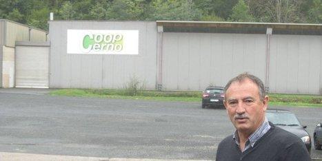 Dordogne : la noix de Cerno, un modèle de développement agricole - SudOuest.fr | Noix, noisettes, châtaignes | Scoop.it