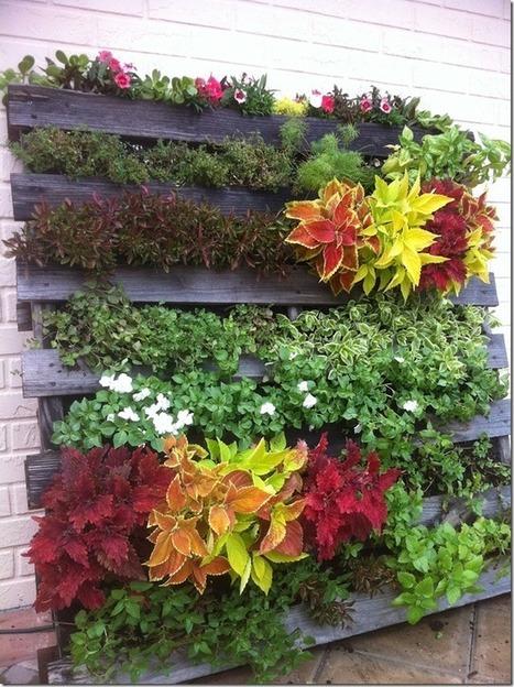 ¿Cómo hacer un jardín vertical con un palet?   Conciencia Eco   Decoración   Scoop.it