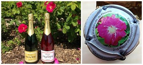 Nouvelle capsule de champagne | Cité médiévale de #Provins | Scoop.it