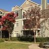 Apartments Fremont CA