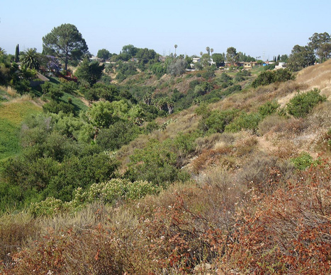 San Diego Adds To Open Space Land Preserves - KPBS | parks, trails, open sapce | Scoop.it