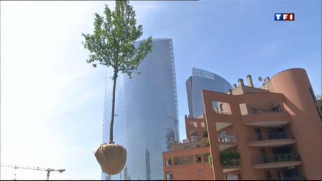 Le journal de 20h - À Milan, la nature s'impose au coeur de la ville | agriculture urbaine | Scoop.it