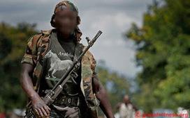 Sud-Kivu: 6 groupes armés d'Uvira souhaitent intégrer les FARDC - Radio Okapi | RDC-ACTUALITES | Scoop.it