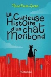 «La curieuse histoire d'un chat moribond» de Marie-Renée Lavoie: débrouillardise 101 | CaniCatNews-actualité | Scoop.it