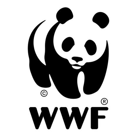 RDC : WWF plaide pour les intérêts des autochtones dans les exploitations pétrolières | Virunga - WWF | Scoop.it