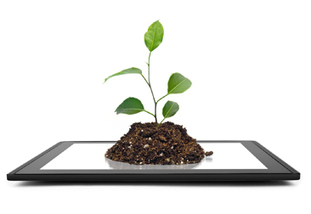 Android apps to enhance your green thumb | Landscape Design DIY, Tips, and Best Practices | Scoop.it