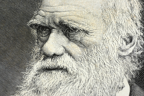 Darwin revisited: Compassion key to our survival | Empathy | Scoop.it