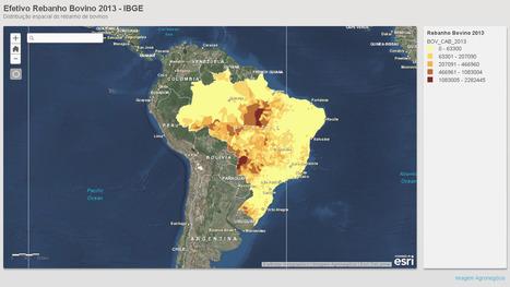 Efetivo Rebanho Bovino 2013 - IBGE Distribuição espacial do rebanho de bovinos | Imagem Agronegócio | Scoop.it