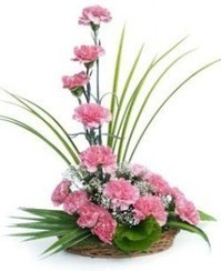 Send Flowers to Mumbai | Online Flower and Cake Delivery in Mumbai | Flowers Delivery to India | Scoop.it