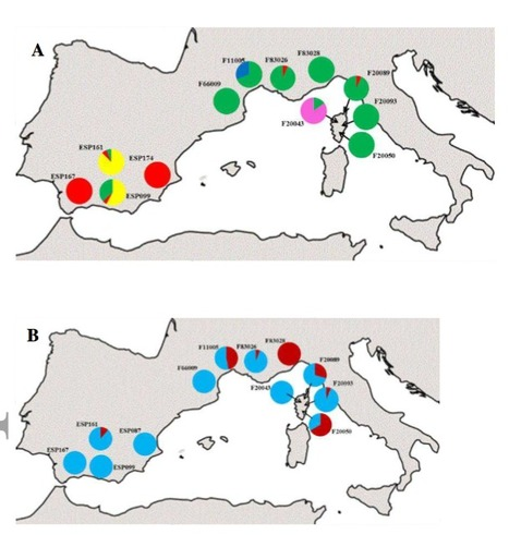 Intra-population genomics in a model mutualist: population structure and candidate symbiosis genes under selection in Medicago truncatula | Plant-Microbe Symbiosis | Scoop.it