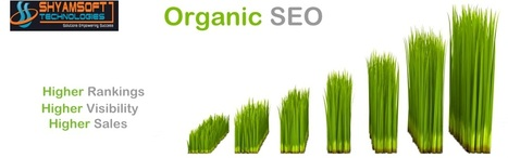 Scope of outsourcing the job to Organic SEO Services India   Organic Seo India   Scoop.it