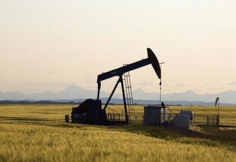 Oil falls as Iran, Libya output rises hit OPEC deal momentum | Skin care products | Scoop.it