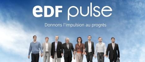 Vidéo : les lauréats des prix EDF Pulse témoignent | Le groupe EDF | Scoop.it