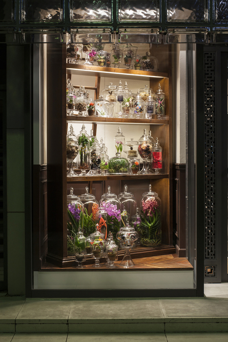 AMKK(東 信、花樹研究所) » メゾンエルメス・ウィンドウディスプレイ– 時の庭 –   artesaniaflorae   Scoop.it