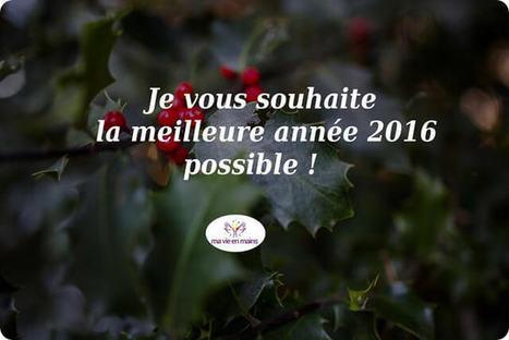 Bonne année 2016 ! (+ bilan 2015) - Ma vie en main   Prenez votre vie en mains !   Scoop.it