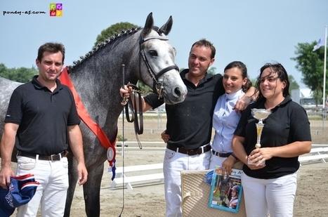 Sologn'Pony 2012 : Championnat de France des 3 ans montés Connemara 2012 – Lamotte-Beuvron, 19 août | Cheval et sport | Scoop.it