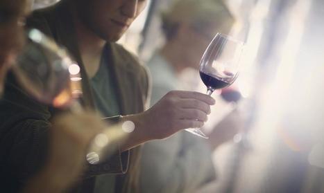 De la vigne au vin... | Verres de Contact | Scoop.it