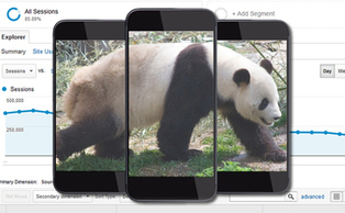 Panda Has a Smartphone – Here Are 7 Things You Can Do to Test It Now | Mobile Marketing | Scoop.it