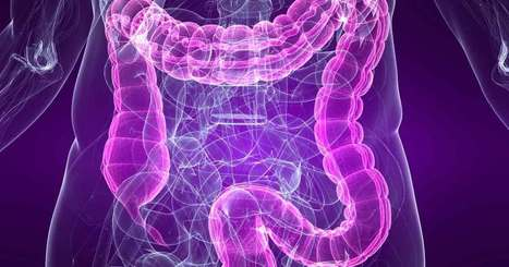 How Probiotics May Aid Your Weight Management   Weight Loss News   Scoop.it