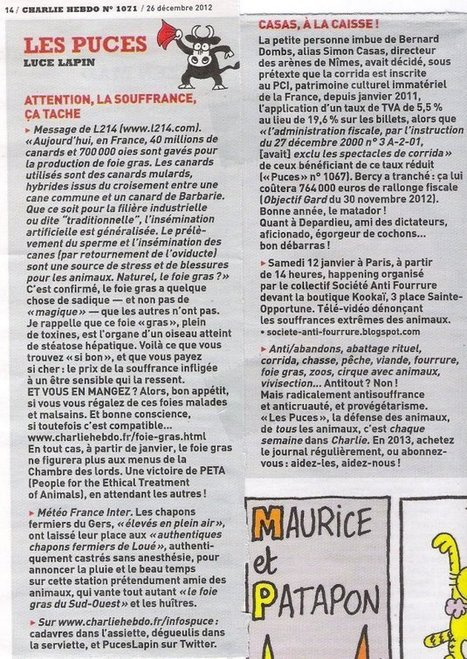 Les Puces de Luce Lapin n°1071 Charlie Hebdo du 26 décembre ...   Chic Planète   Scoop.it