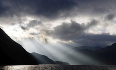 Corporates as agents of social change: the academic view | Wellington Aquaponics | Scoop.it