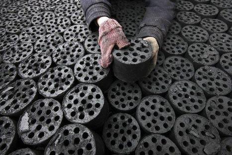 Chine: la consommation d'énergie en hausse de 3,9% en 2012 | Sustain Our Earth | Scoop.it