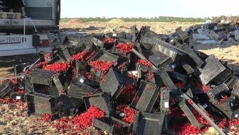 FreshFruitPortal.com | Russia places fruit import bans on more countries | Fruits & légumes à l'international | Scoop.it