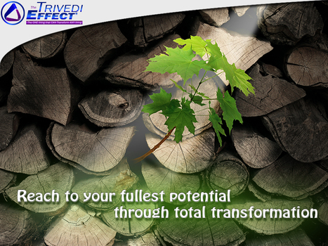 Experience total transformation in life through The Trivedi Effect® | Health and Wellness | Scoop.it