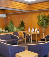 Interior Landscape Portfolio - Offices, Buildings, Corporate | Interior Office Plants | Scoop.it