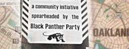 BlackPanther.org | Xpose Corrupt Courts | Scoop.it