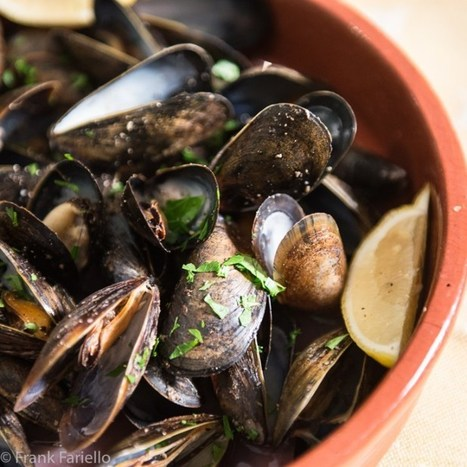Peppered Mussels - Impepata di cozze | Le Marche and Food | Scoop.it