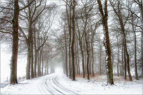 Winter Landscape Photography Tips – Loaded Landscapes | Photography | Scoop.it