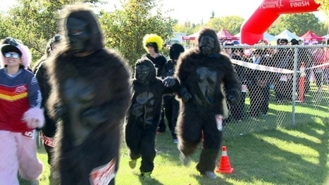 Gorilla Run has primates rushing through river valley   East Africa Travel Guide   Africa Travel Guide   Scoop.it