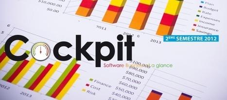 Logiciels : le marché échappe à la décroissance et anticipe un léger rebond - AFDEL   Profession chef de produit logiciel informatique   Scoop.it