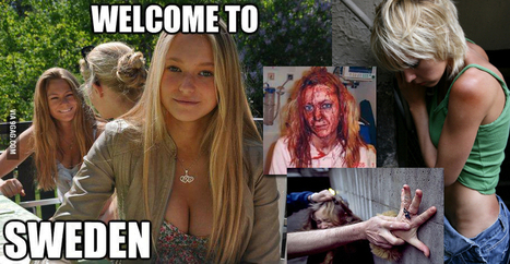 The Fruits of Diversity: 23% of Swedish Women Will be Raped by Nonwhite Immigrants   Psychology around the globe.   Scoop.it