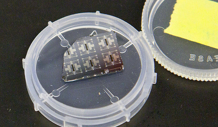 Synaptic transistor learns while it computes | Biosciencia News | Scoop.it