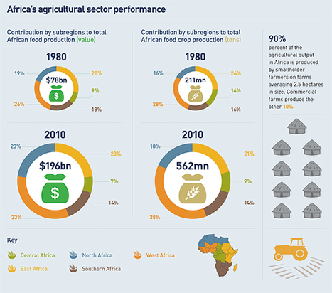 Livestock tracking in Africa goes high tech   African News   Scoop.it