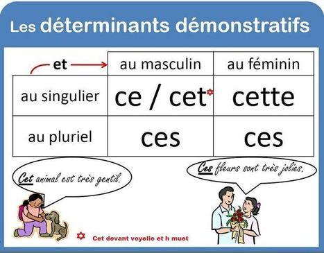 Les adjectifs démonstratifs | LilianaHR | Scoop.it