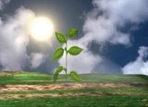 Optimisation énergétique : production d'hydrogène avec le soleil ... | Le soleil | Scoop.it