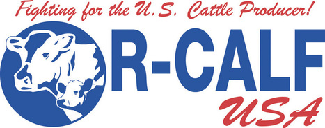The Official R-CALF USA Website - The fastest growing cattle producer organization in the U.S. | Grown Green Gardens | Scoop.it